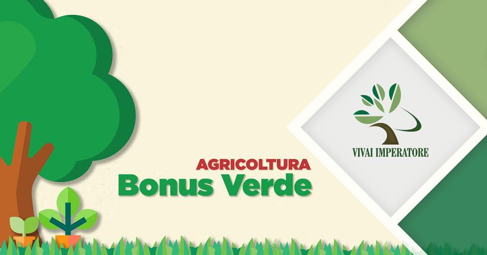 bonus verde